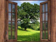 Почему лучше использовать деревянные окна