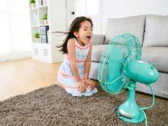 Несколько способов охладить квартиру без помощи кондиционера