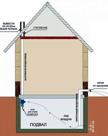 Фото: Схема вентиляции погреба в гараже