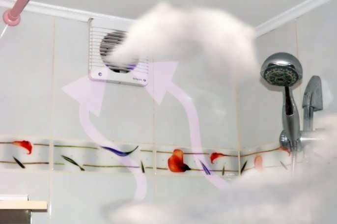 Как сделать вентиляцию в ванной комнате и туалете