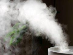 Увлажнение воздуха в квартире без увлажнителя: 10 лучших способов