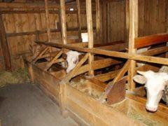 Делаем правильную вентиляцию в сарае для животных